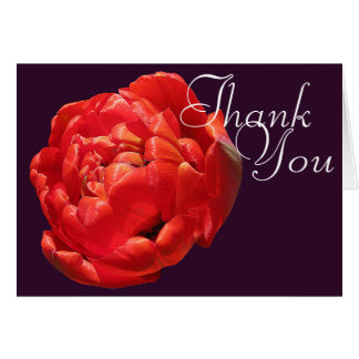 Red Tulip Colorful Photo Chic Mod Floral Thank You Card