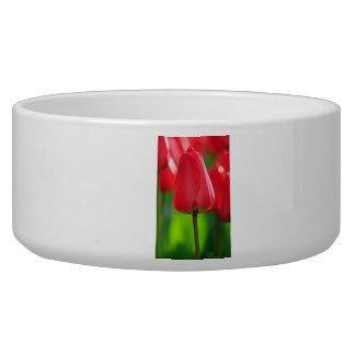 Red Tulip Dog Food Bowl