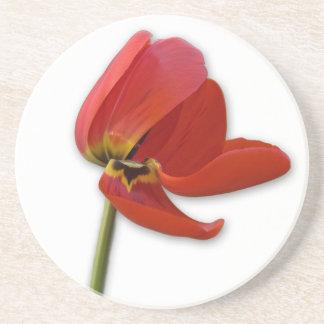 red tulip drink coaster