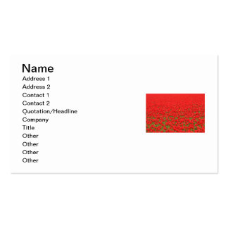 Red Tulip Field Business Card