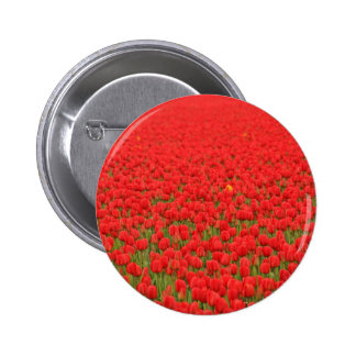 Red Tulip Field Pin
