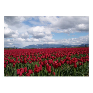 Red Tulip Field Large Business Card