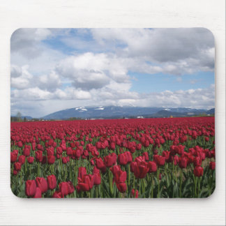 Red Tulip Field Mouse Pad