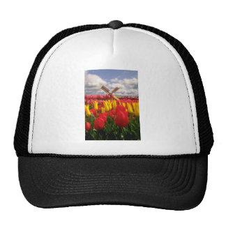 Red Tulip field, Oregon flowers Mesh Hat