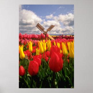 Red Tulip field, Oregon flowers Print