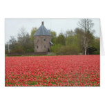 Red tulip fields and church greeting card