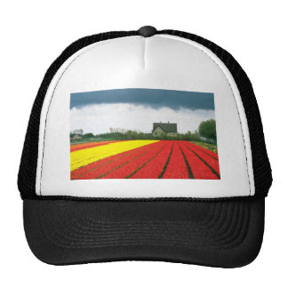 Red Tulip fields, Holland flowers Trucker Hats