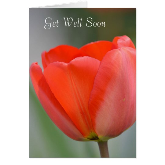 Red Tulip Floral Get Well Soon Card