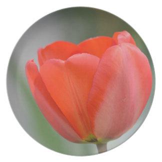 Red Tulip Floral Melamine Plate