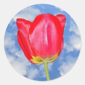 Red Tulip Flower Sticker