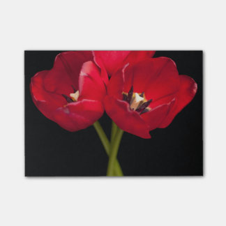 Red Tulip Flowers Black Background Floral Flower Post-it® Notes