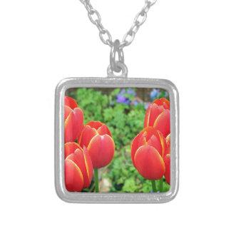 Red tulip flowers in bloom 1 pendants