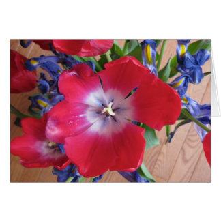 Red Tulip II Card