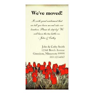 Red Tulip Illustration Change of Address Photocard Card