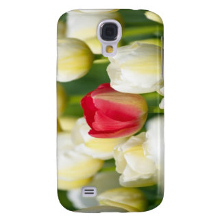 Red tulip in a field of white tulips galaxy s4 case