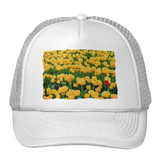 Red Tulip in a Yellow Tulip Field Mesh Hats