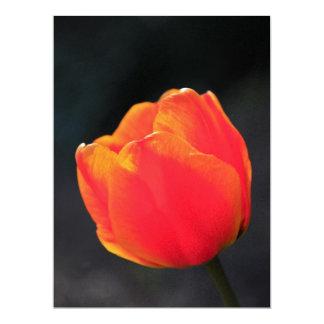 """Red tulip 6.5"""" x 8.75"""" invitation card"""