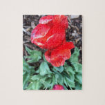 Red tulip jigsaw puzzle