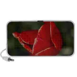 Red Tulip Laptop Speaker