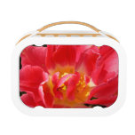 red tulip lunchbox
