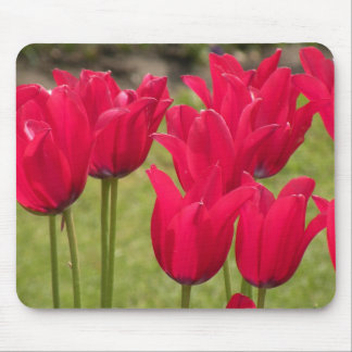 Red Tulip Mousepad