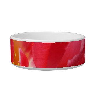 red tulip pet water bowl