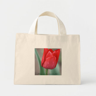 red tulip, Photography By Jamie Sue Hill Mini Tote Bag
