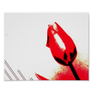 Red Tulip Posters
