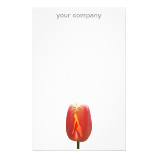 Red Tulip Stationery Paper