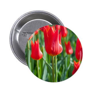 Red Tulips Pin