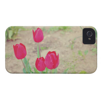Red tulips iPhone 4 Case-Mate case