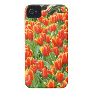Red Tulips iPhone 4 Case