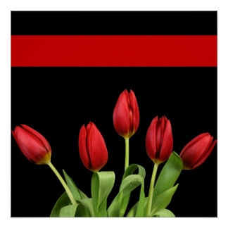 Red Tulips Choose Accent Color Poster