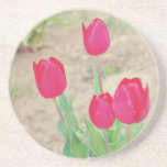 Red tulips coasters