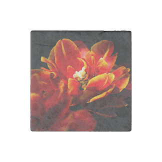 Red tulips dark background stone magnet