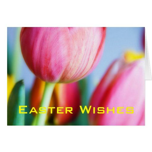 Red Tulips • Easter Greeting Card