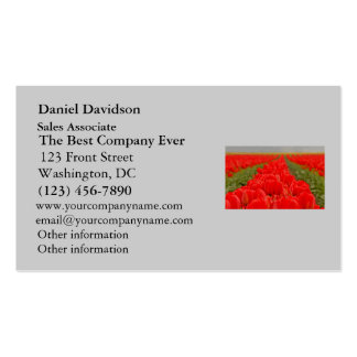 Red Tulips Field Photo Double-Sided Standard Business Cards (Pack Of 100)