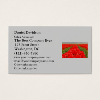 Red Tulips Field Photo Business Card