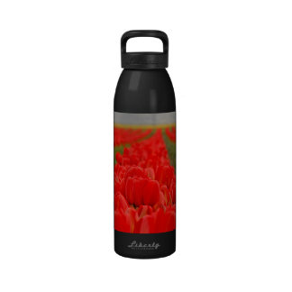 Red Tulips Field Photo Drinking Bottles