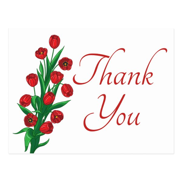 Red Tulips Floral Thank You Wedding Flowers Postcard