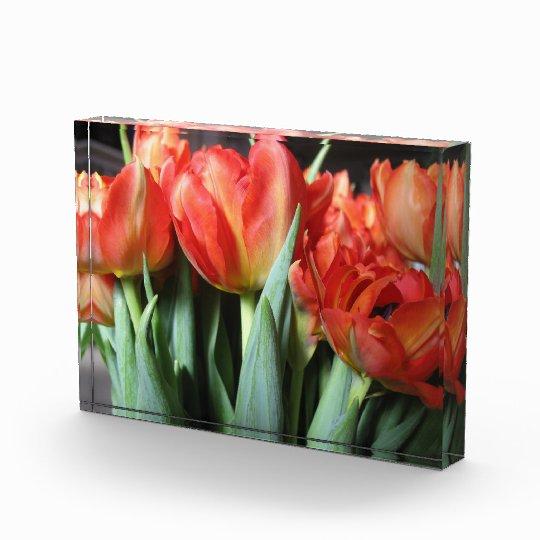 Red Tulips Flowers Acrylic Art Block