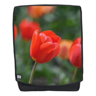 Red Tulips in the Garden Backpack