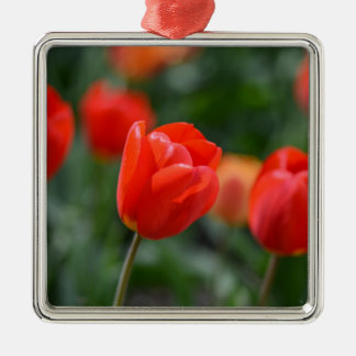 Red Tulips in the Garden Metal Ornament