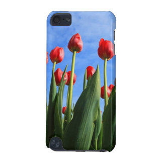 Red Tulips In The Sky ipod Touch Case