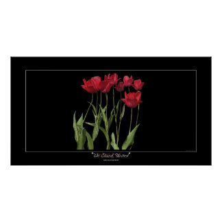 RED TULIPS Inspirational Art Poster