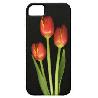 REd Tulips iPhone Case iPhone 5 Cases