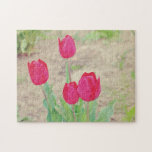 Red tulips jigsaw puzzles