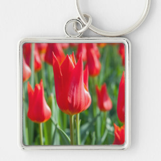 Red Tulips Keychain