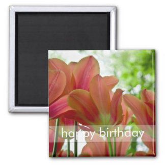 Red Tulips Macro DSC0876 2 Inch Square Magnet