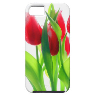 Red Tulips On White iPhone 5 Case